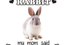 Rabbit Love / I love rabbits