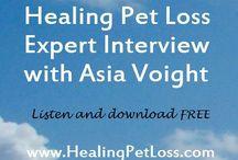 Pet Loss & Grief / Pet Loss & Greief
