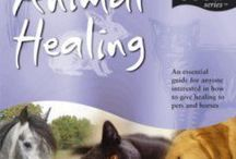 Animals & Spirituality / Animals & Pets & Spirituality.