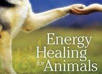 Animal Healing / Animal Healing