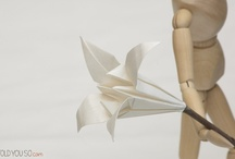 """Origami  / """"Origami is the art of patience and accuracy"""" - <3"""