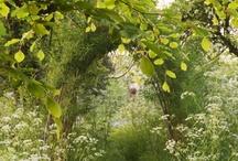 Inspiration... Secret gardens