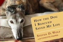 Adopt a Shelter Dog Month - October 2014 / Check out one of these books and find the right four-legged friend for you. These and other books are on display at the Central Library.