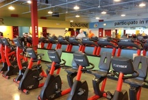 Gym Source Commercial Installs / Here are some of the great gyms we've helped design and equip.
