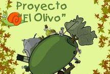 proyecto El olivo