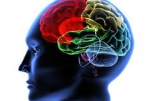Neurological KST Chiropractic / Neurological Care for anyone of any age.  Better brain balance results in improved health.
