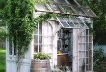 Estufas / Estufas ajudam as plantas a ficarem bonitas o ano todo