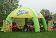 Nestum Rugby Cup