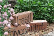 "Amazing Gardens / Here are some quick and ""Dirt Cheap"", garden ideas to spruce up your backyard."