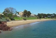 Places to Visit in Phillip Island / Venues and scenic places to visit in Phillip Island.