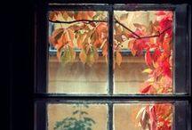Autumn time...