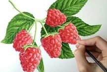 Fruits and vegatables / Inspiration - colour - paint