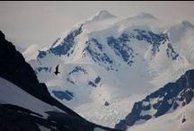 Namaste Antartica