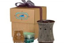 Package Deals / Grace Adele bags and Scentsy package deals  / by ><> Gene Schur - Independent Scentsy Super Star Consultant. Simply Aroma
