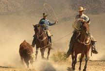 Cawboy+Cowgirl / by Iatrodikastis O.PeridisDr. (Forensic Med.Examiner)