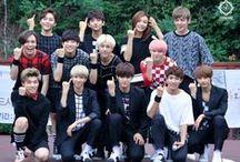 Seventeen / Debut May, 2015   Leader S.coups   3 Unit (Vocal, Perfomance, Hip-hop)   PLedis Entertaintment  
