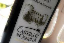 Cata Aceite 2014 | @UCMgastro-UEC