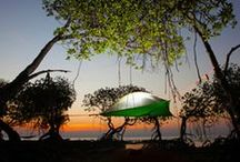 Hammock Tents / It's a hammock no it's a tent, ok what about a hammock tent. Stay protected and above the ground with these hammock camping tents.