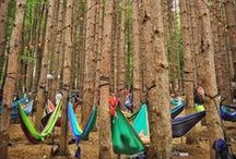 Hammocking Festivals / People enjoying festivals around the world, lounging in their hammocks, listening to their favorite songs.