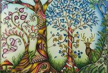 Johanna Basford - Enchanted Forest / Johanna Basford - Adult Coloring Book - Enchanted Forest