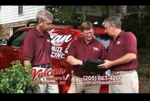Vulcan Termite & Pest Control / Vulcan Termite and Pest Control, Inc was established in 1965 and is one of the largest family owned and operated termite and pest control companies in Alabama.  Our highly trained technicians provide professional and courteous termite and pest control services for both residential and commercial customers. Vulcan retains a Board Certified Entomologist who regularly updates our training and keeps us up-to-date with the latest termite and pest control strategies.