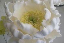 Fiori in pasta di zucchero / fondant-gumpaste sugar flowers