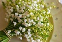 buchete incantatoare - lovely bouquets / #bucheteflori #flowerbouquets