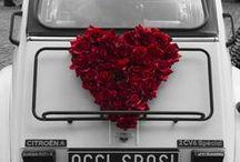 flori pentru masina - Nunta