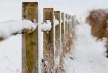 ⛄️ ❄️ sneeuw ❄️ ⛄️
