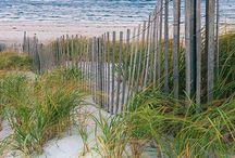 ⛱ zon, zee & strand ⛱