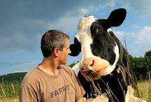 Got milk / by Stanley Kiepura