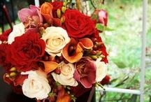 Flowers / Flowers Flowers Flowers