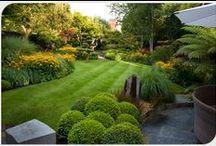 Jardines Perfectos / Conoce los jardines más hermosos, mismos que tú puedes tener, nosotros te compartimos la idea y las herramientas que lo harán lucir perfecto, ¡Evans quiere ser parte de tu equipo!