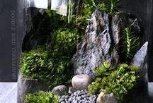 Tiny Worlds / Aquariums. Vivariums. Terrariums.