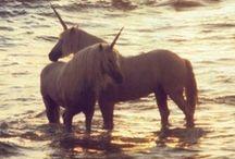 unicornz