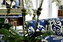 Decor / There is nothing more gratifying than being surrounded by beauty! / by Arlene Bailey