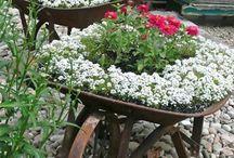 Szép kertek szerte a világban. Kerti ötletek, ötletes megoldások. / Mindenkinek álma egy szép hangulatos és élhető kert. Ehhez nyújt ötleteket inspirációt az itt összegyűjtött és folyamatosan frissülő kerti képgyüjtény.