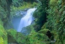 New Zealand Bound ❤