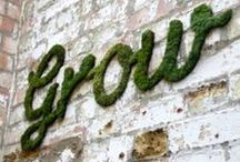 garden & eco / growing things and living green / by Tishy Souris