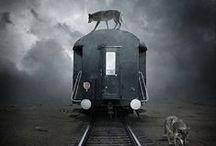 Vlaky Trains / Má rád vlaky,co někam jedou...