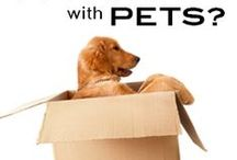Apartment Pets / Living with Pets / by UVU Housing & Residence Life