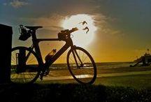 Explore Laguna / Things to do in Laguna Beach