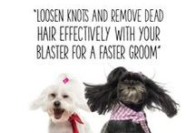 Groomers Pro Tips / Tips for Professional Pet Groomers