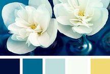 ★ Color Palettes ★