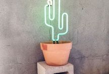 Cacti and Palm prints / Cacti and Palm prints and ideas