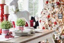 ➳ Christmas Trees