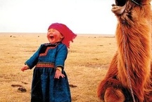 I love to laugh : ) / by Cindy Merchant