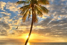 Key West / by Madeline Walters