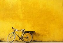 Your World in Colour  Yellow
