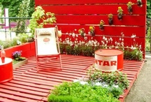 Decorating, Gardening & Crafts / by sandy whiteley
